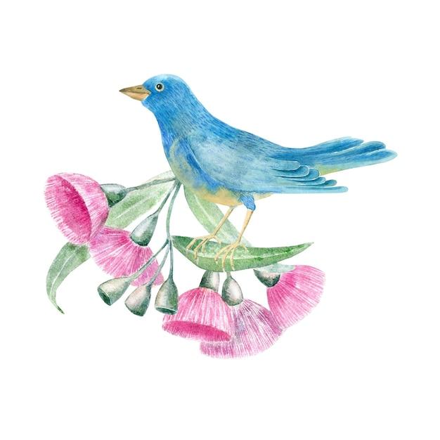 Akwarela Tropikalny Ptak W Kwiaty Eukaliptusa Premium Zdjęcia