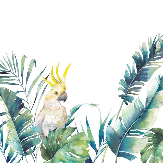 Akwarela Zieleni I Duża żółta Rama Kakadu. Premium Zdjęcia