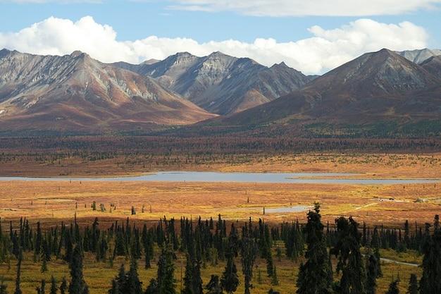 Alaska Góra Góry Las Drzewa Natura Zdjęcie Darmowe Pobieranie