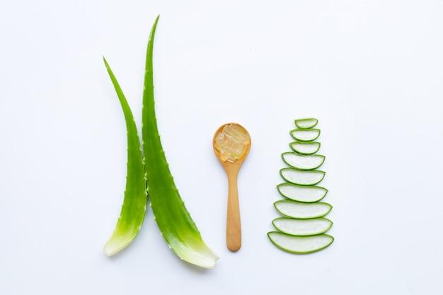 Aloe vera to popularna roślina lecznicza dla zdrowia i urody, białe tło. Premium Zdjęcia