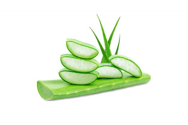 Aloesu Vera świeży Odosobniony Na Białym Tle Premium Zdjęcia