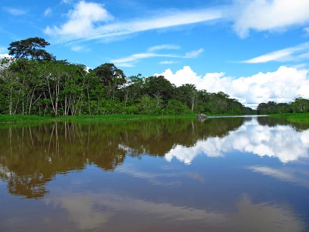 Amazonka W Peru, Ameryka Południowa Premium Zdjęcia