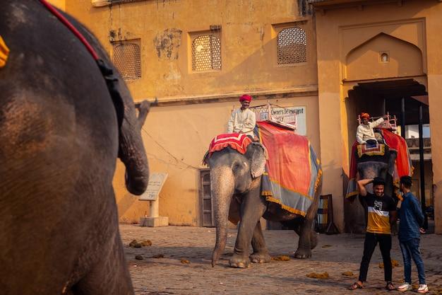 Amber Palace W Regionie Radżastan W Indiach. Premium Zdjęcia