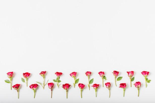 Artystyczny Pojęcie Czerwonych Róż Z Kopii Przestrzenią Darmowe Zdjęcia