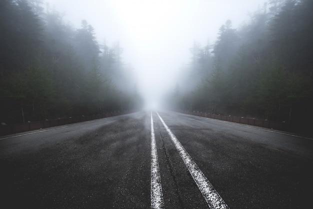 Asfaltowa droga przechodzi przez mglisty zmrok Premium Zdjęcia