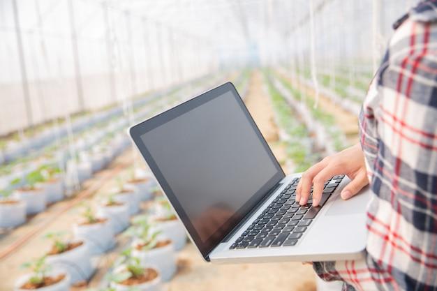 Asystent nauk przyrodniczych, urzędnik ds. rolnictwa. w melonowych badaniach farm cieplarnianych Darmowe Zdjęcia