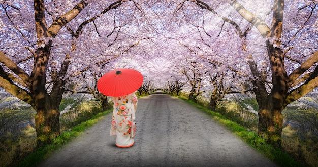 Azjatycka Kobieta Jest Ubranym Japońskiego Tradycyjnego Kimono Premium Zdjęcia