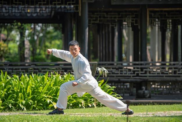 Azjatycki mężczyzna pracujący z tai chi w ranku przy parkiem out, chińskie sztuki samoobrony, zdrowa opieka dla życia pojęcia. Premium Zdjęcia
