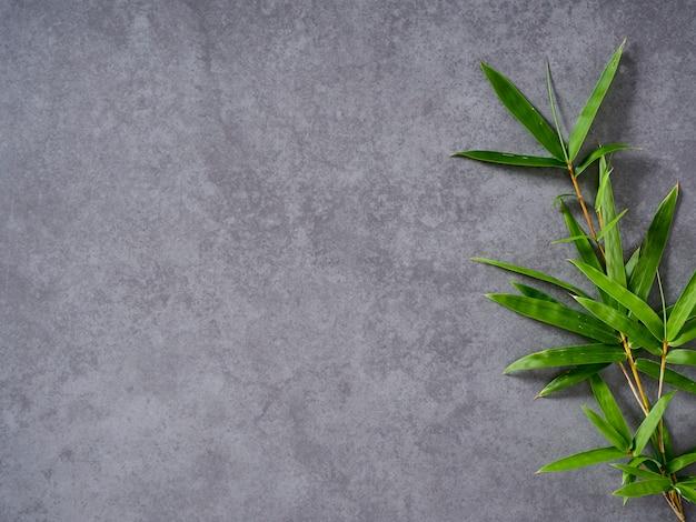 Bambus liście na szarym tle. Premium Zdjęcia