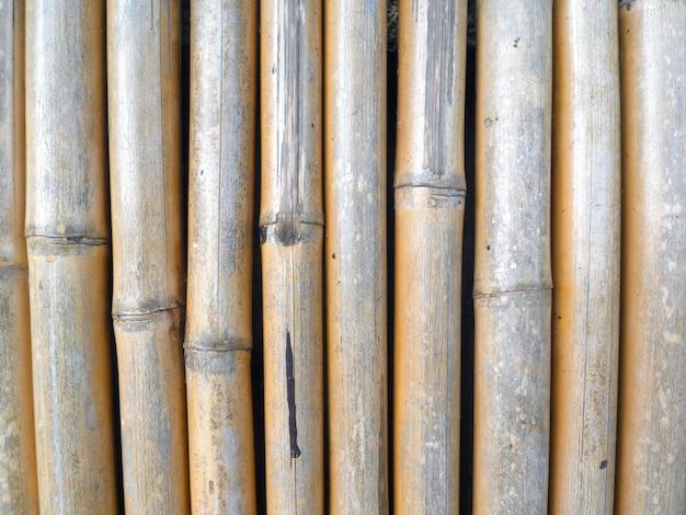 Bambusowy płot Premium Zdjęcia