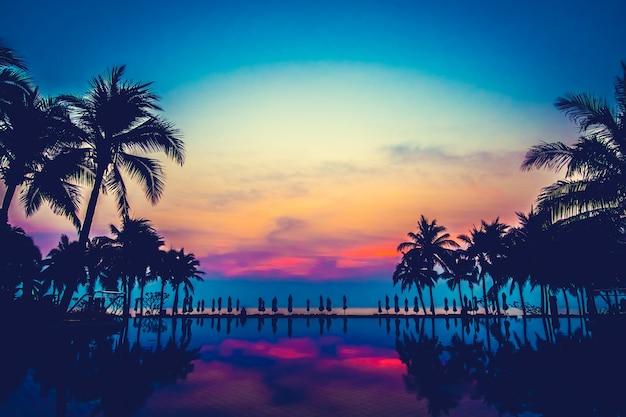 Basen Krajobraz Natura Ocean Palma Darmowe Zdjęcia