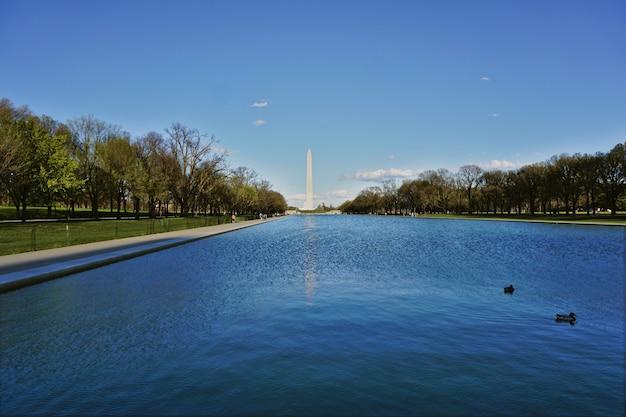 Basen Między Obeliskiem A Pomnikiem Lincolna W Waszyngtonie, Usa. Popołudnie Było Słoneczne I Niektóre Kaczki Pływały W Wodzie Premium Zdjęcia