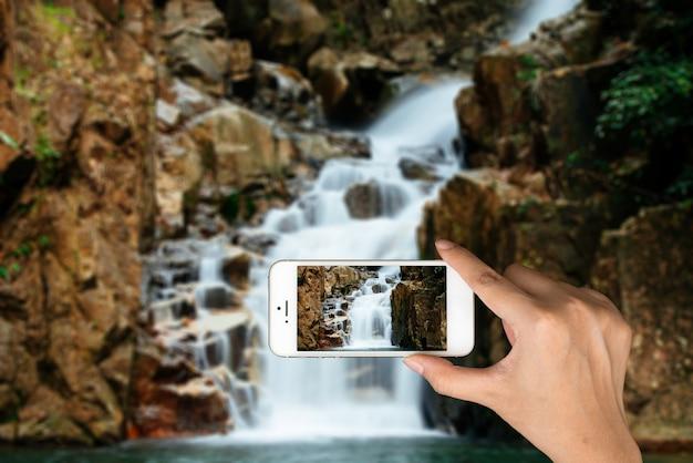 Basen telefonu turystycznej przy lesie Darmowe Zdjęcia