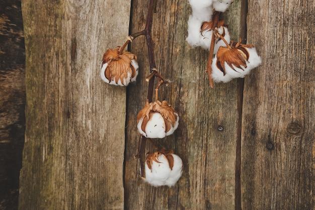 Bawełniane Kwiaty Na Drewnianym Stole Darmowe Zdjęcia