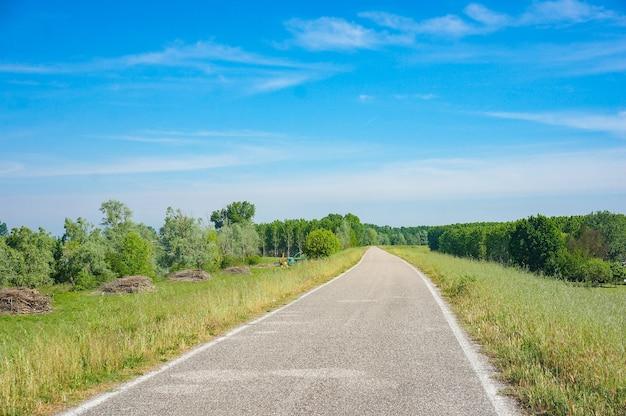 Betonowa Droga Otoczona Zielenią Z Błękitnym Niebem W Darmowe Zdjęcia