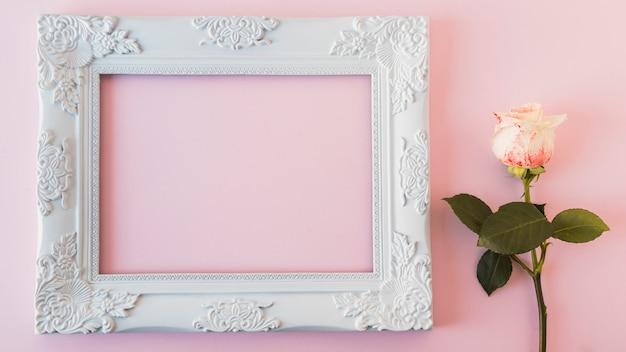 Biała ramka na zdjęcia archiwalne i świeży kwiat Darmowe Zdjęcia