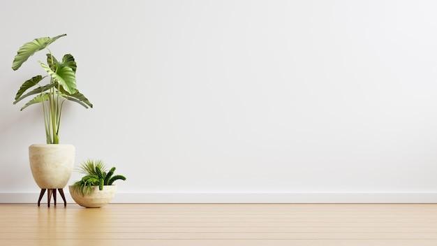 Biała ściana Pusty Pokój Z Roślinami Na Podłodze, Renderowanie 3d Darmowe Zdjęcia