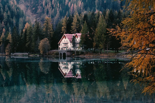 Biały Dom Otoczony Drzewami Darmowe Zdjęcia