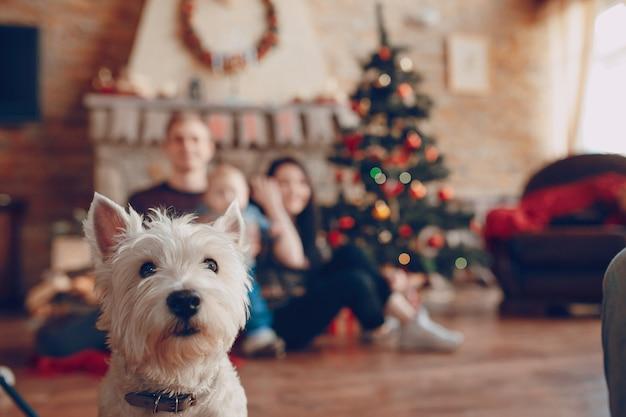 Biały pies z rodziną rozmytą tle Darmowe Zdjęcia