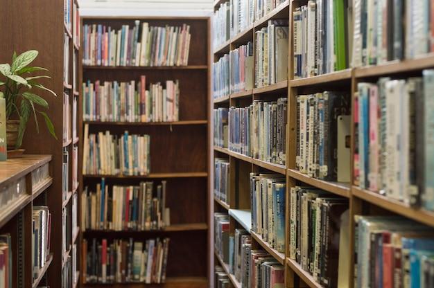 Biblioteka Darmowe Zdjęcia