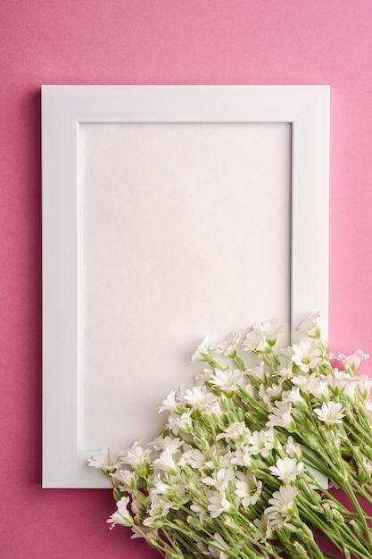 Biel Pusta Ramka Na Zdjęcia Z Ucha, Gwiazdnica Kwiaty Na Różowym Tle, Widok Z Góry Kopii Miejsca Premium Zdjęcia
