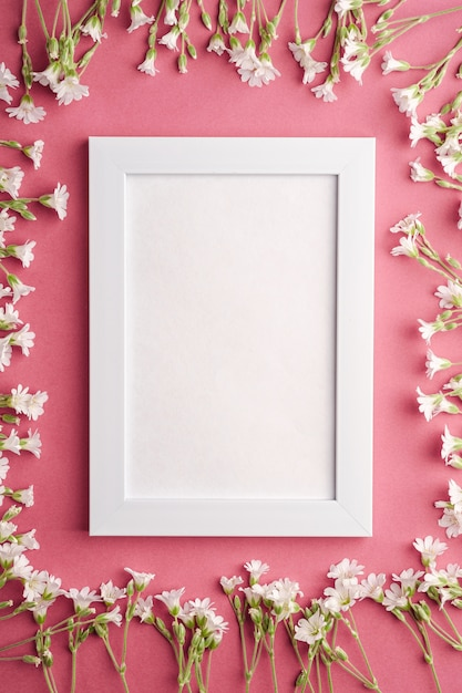Biel Pusta Ramka Na Zdjęcia Z Ucha Kwiatów Gwiazdnika Na Różowym Fioletowym Stole, Widok Z Góry Kopii Przestrzeni Premium Zdjęcia
