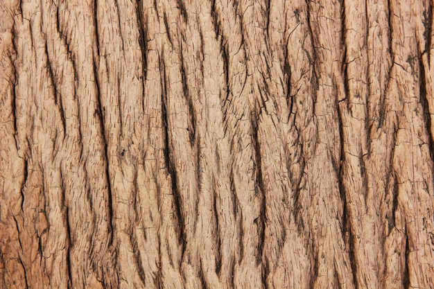 Bliska góry viwe stare drewniane brązowe tło z powrotem Premium Zdjęcia