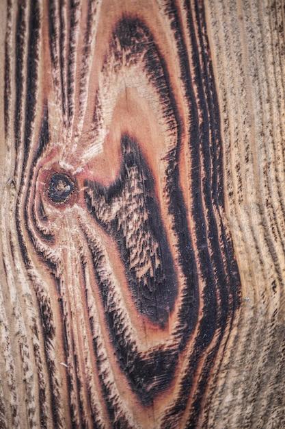 Brązowa Struktura Drewna. Streszczenie Tło, Pusty Szablon Darmowe Zdjęcia