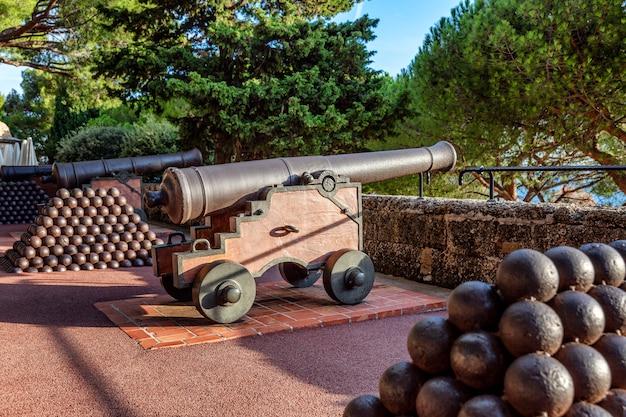 Broń Z Pięknie Rozmieszczonymi Rdzeniami Górskimi W Ogrodzie Pałacu Księcia. Premium Zdjęcia