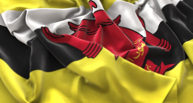 Brunei Flaga Sztuk Pięknie Macha Makro Close-up Shot Darmowe Zdjęcia
