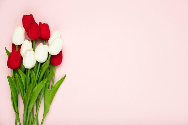 Bukiet Białych I Czerwonych Tulipanów Z Kopią Miejsca Darmowe Zdjęcia