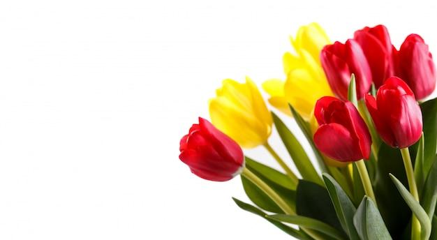 Bukiet Czerwonych I żółtych Tulipanów Premium Zdjęcia