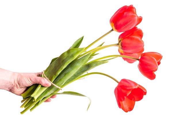 Bukiet Czerwonych Tulipanów Premium Zdjęcia