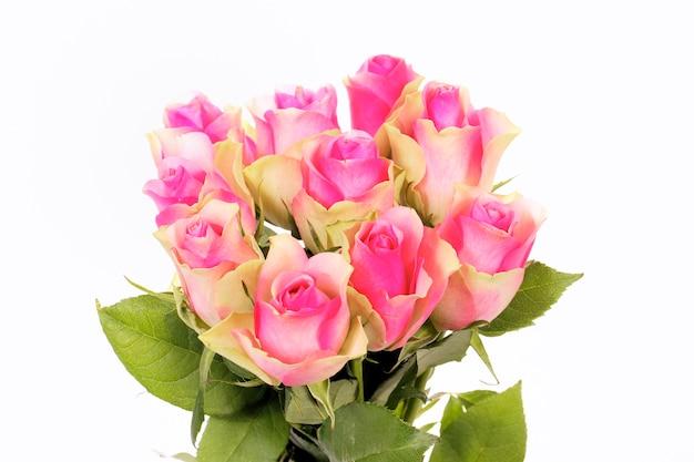 Bukiet Róż Na Białym Tle Darmowe Zdjęcia
