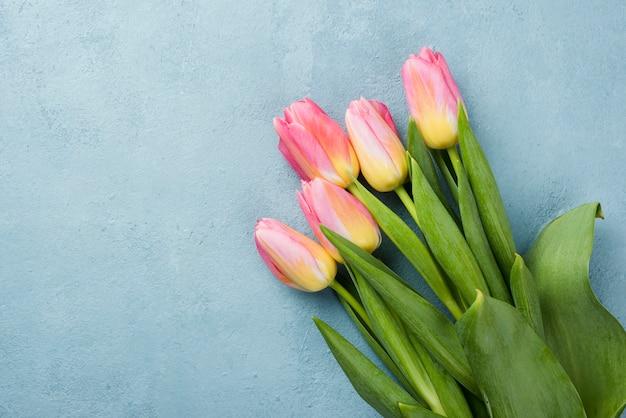 Bukiet Tulipanów Miejsce Na Stole Darmowe Zdjęcia
