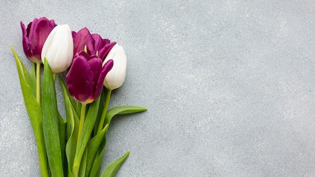 Bukiet Tulipanów Z Miejsca Kopiowania Darmowe Zdjęcia