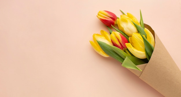 Bukiet Tulipanów Z Miejsca Na Kopię Darmowe Zdjęcia
