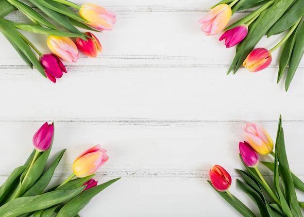 Bukiety Tulipanów Wzdłuż Krawędzi Darmowe Zdjęcia