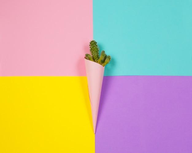 Cactus Fashion Design. Minimalna Moda Stillife. Modne Jasne Kolory. Premium Zdjęcia