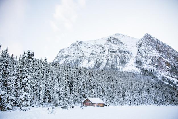 Chata W śnieżnym Polu Ze Skalistymi Górami I Lasem Darmowe Zdjęcia