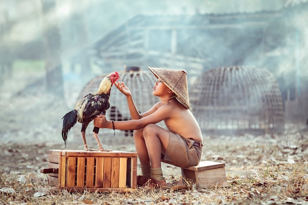 Chłopcy, Dzieci Z Tajlandzkich Farmerów Bawiących Się Gamecockami. To Jest Jego Zwierzak. Pamiętano Go Po Powrocie Z Wiejskiej Szkoły Premium Zdjęcia