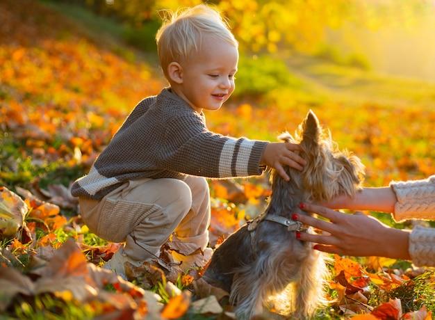 Chłopiec Dziecko Siedzi W Jesiennych Liściach W Parku Z Małym Pięknym Szczeniakiem. Premium Zdjęcia