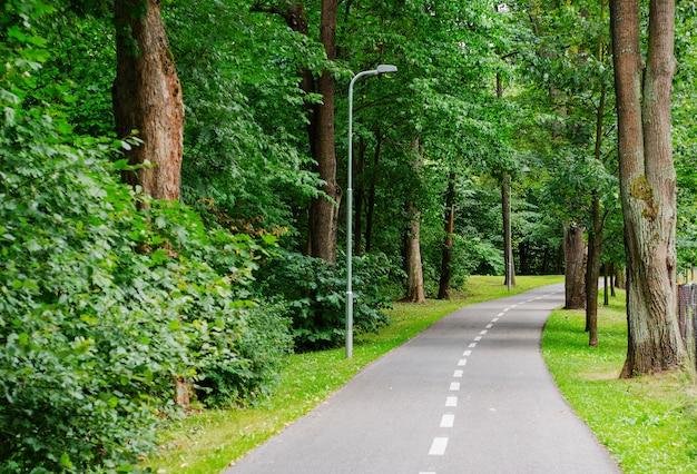 Chodnik Dla Pieszych I Rowerzystów W Parku Miejskim Premium Zdjęcia