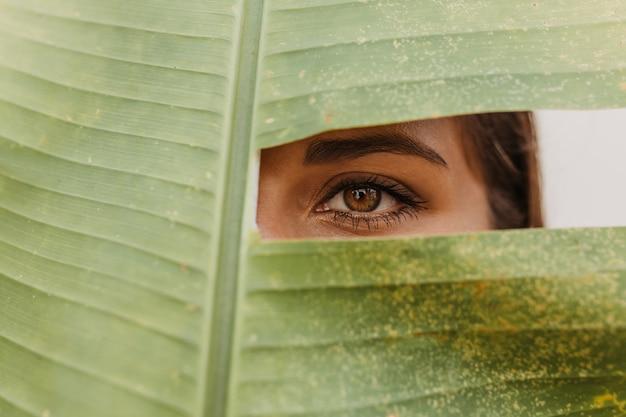 Ciemnowłosa Kobieta O Zielonych Oczach Spoglądająca Z Przodu Przez Dziurę W Wielkim Liściu Darmowe Zdjęcia
