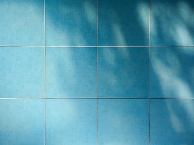 Cień oddziałów i liści na niebiesko dekoracyjne płytki ceramiczne ściany Premium Zdjęcia
