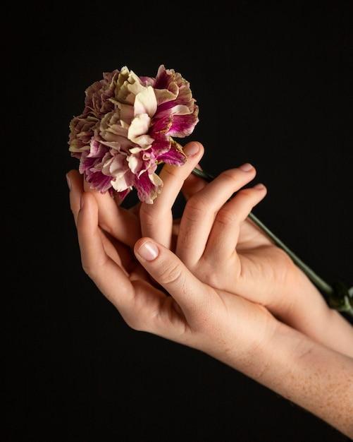 Close-up Kobieta Trzyma Kwiat Darmowe Zdjęcia