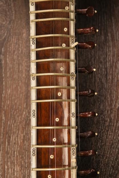 Close-up Z Podstrunnica Sitar Indyjski Instrument Muzyczny Leżący Na Drewnianej Podłodze - Obraz Premium Zdjęcia