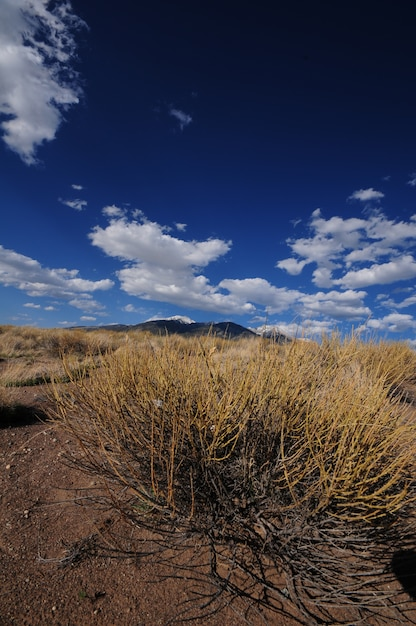 Colorado Plains Darmowe Zdjęcia