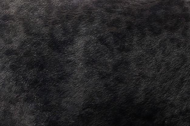 Czarnej Pantery Skóry Tekstury Tło Premium Zdjęcia