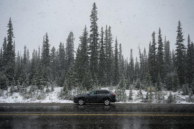 Czarny Samochód Suv W Ciężkiej Zamieci Zaparkowanej Przy Drodze W Lesie Sosnowym Premium Zdjęcia